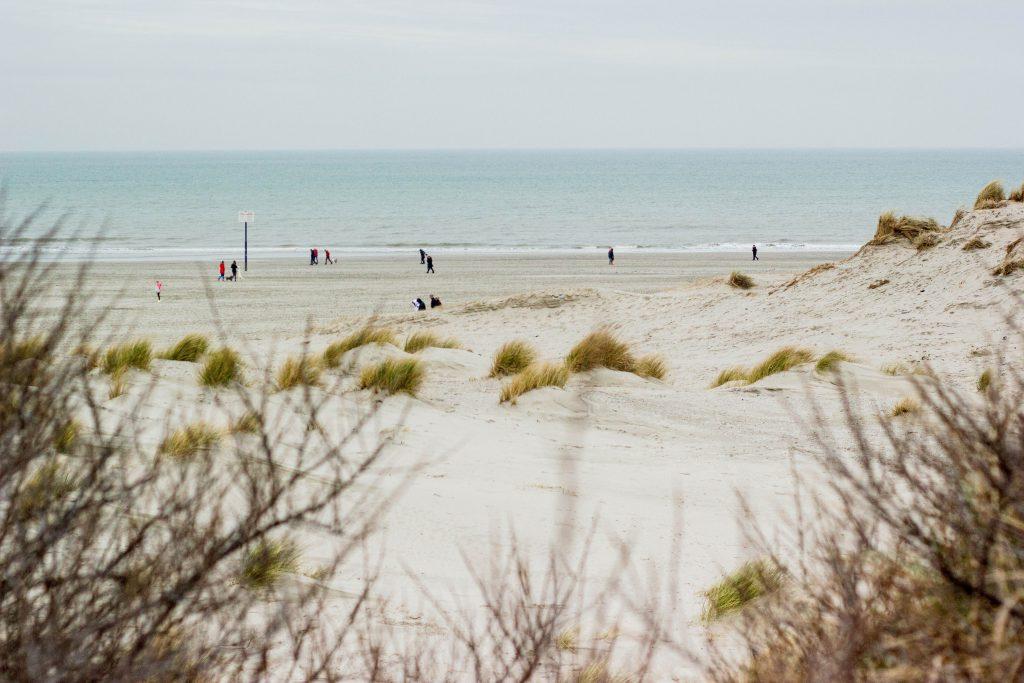 brede stranden kop van noord-holland